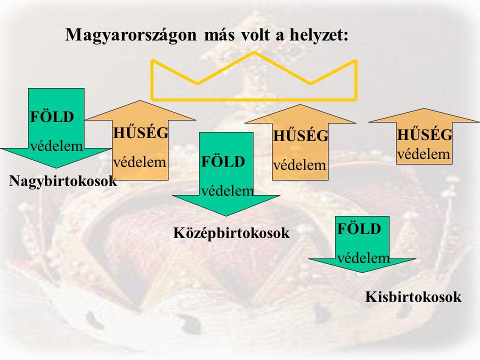Magyarországon más volt a helyzet: