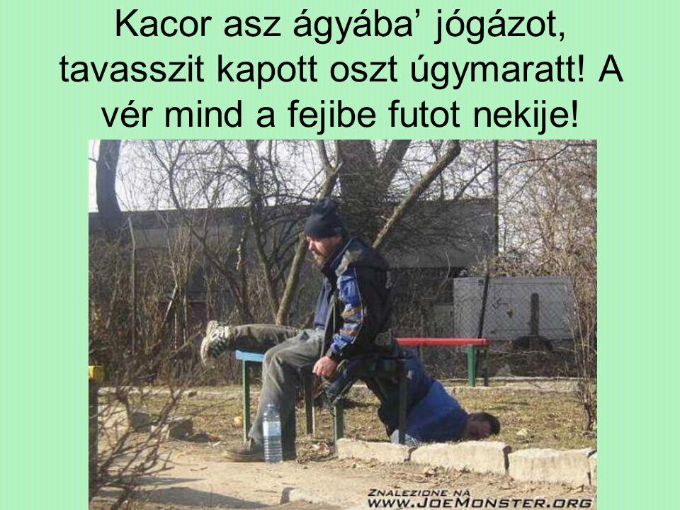 Kacor asz ágyába' jógázot, tavasszit kapott oszt úgymaratt