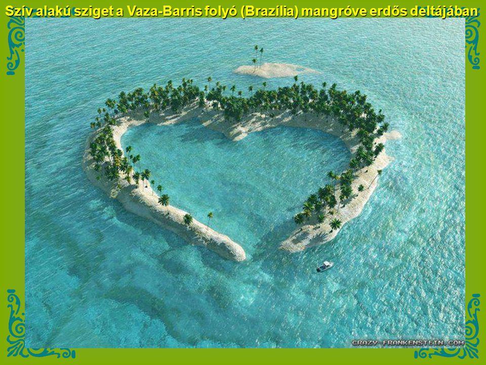Szív alakú sziget a Vaza-Barris folyó (Brazília) mangróve erdős deltájában