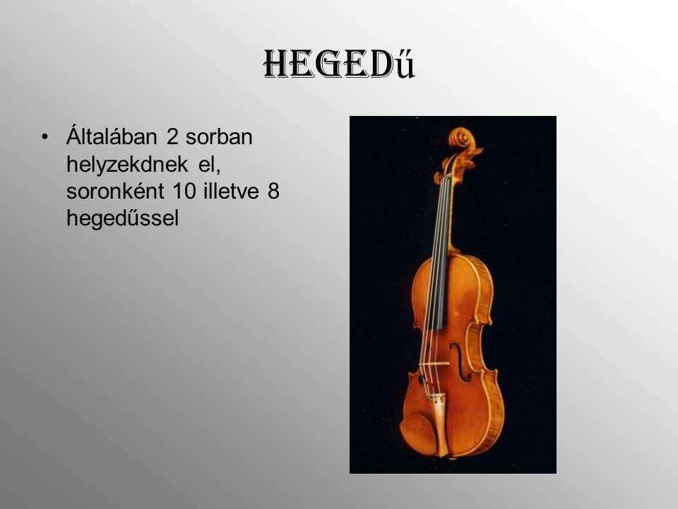 Hegedű Általában 2 sorban helyzekdnek el, soronként 10 illetve 8 hegedűssel