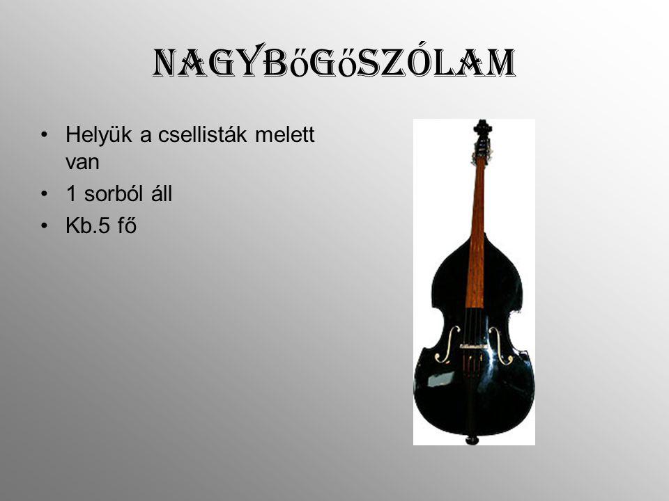 Nagybőgőszólam Helyük a csellisták melett van 1 sorból áll Kb.5 fő