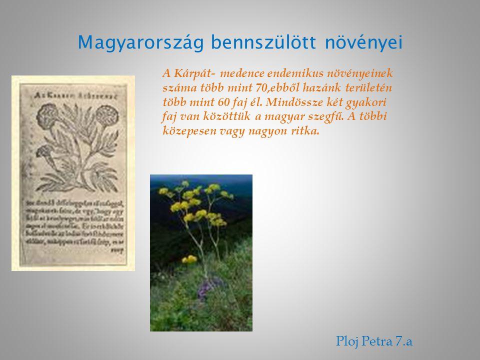 Magyarország bennszülött növényei