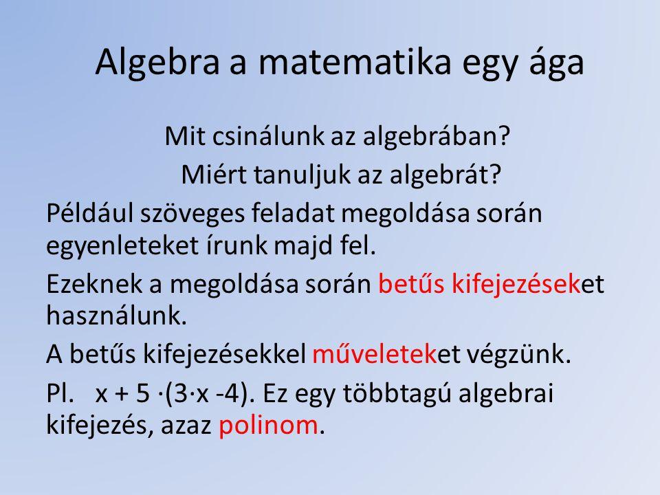 Algebra a matematika egy ága