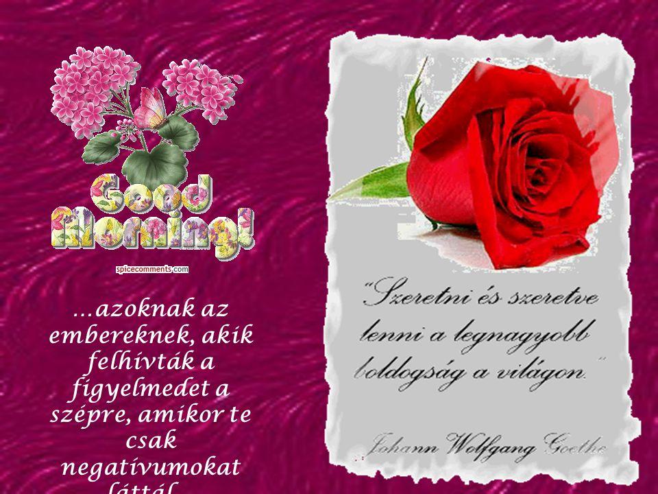 …azoknak az embereknek, akik felhívták a figyelmedet a szépre, amikor te csak negatívumokat láttál…