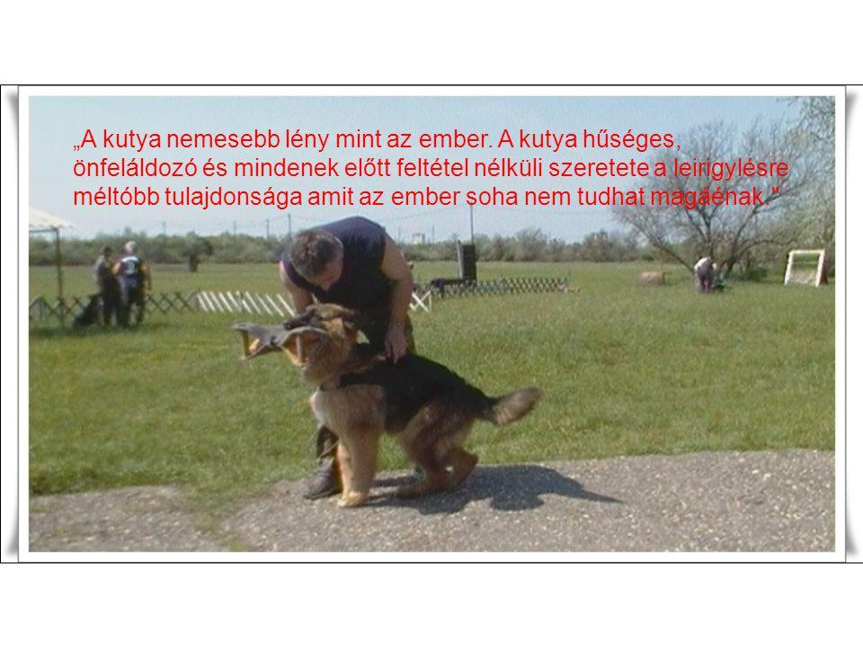 """""""A kutya nemesebb lény mint az ember"""