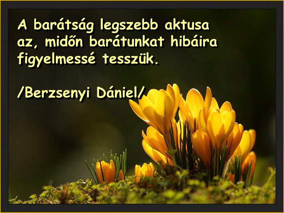 A barátság legszebb aktusa az, midőn barátunkat hibáira figyelmessé tesszük. /Berzsenyi Dániel/