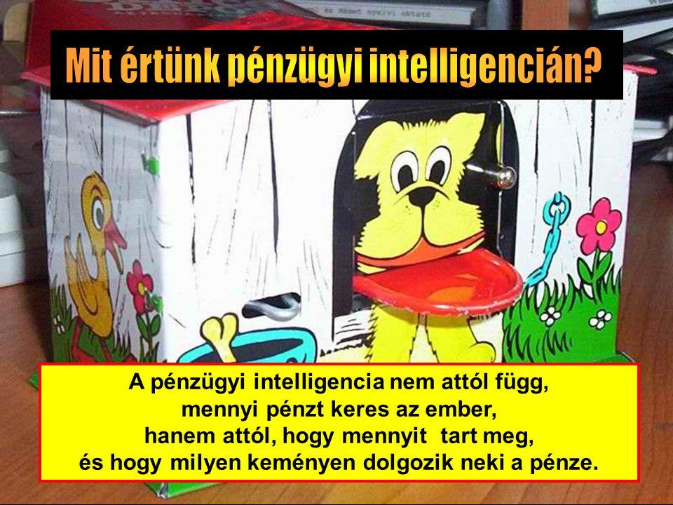Mit értünk pénzügyi intelligencián