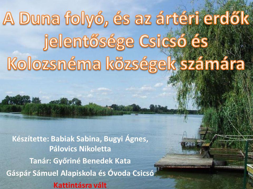 A Duna folyó, és az ártéri erdők jelentősége Csicsó és Kolozsnéma községek számára
