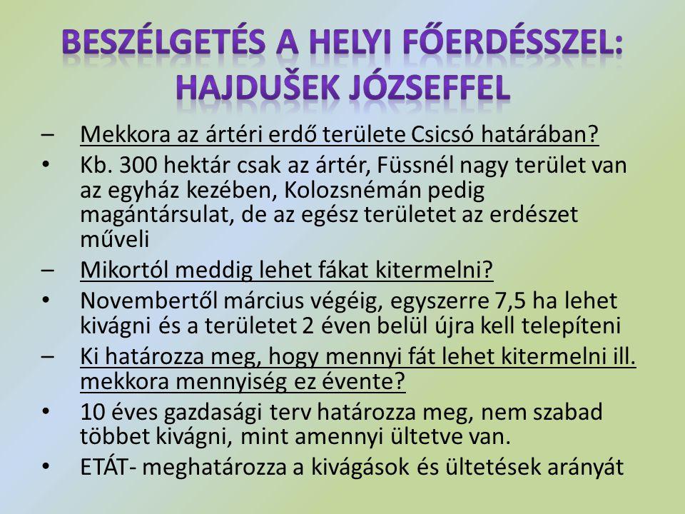 Beszélgetés a helyi főerdésszel: Hajdušek Józseffel