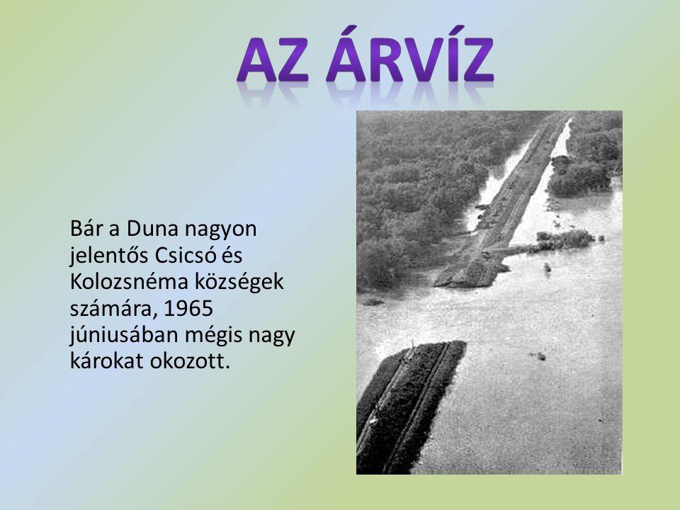 Az Árvíz Bár a Duna nagyon jelentős Csicsó és Kolozsnéma községek számára, 1965 júniusában mégis nagy károkat okozott.