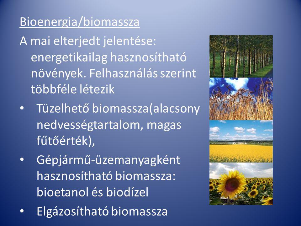Bioenergia/biomassza