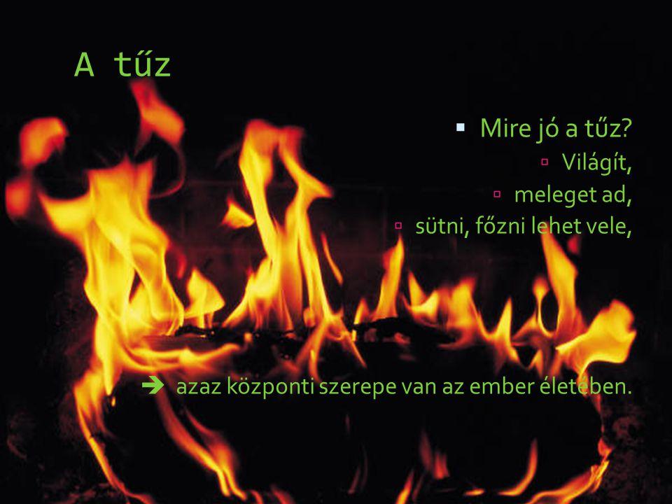 A tűz Mire jó a tűz Világít, meleget ad, sütni, főzni lehet vele,