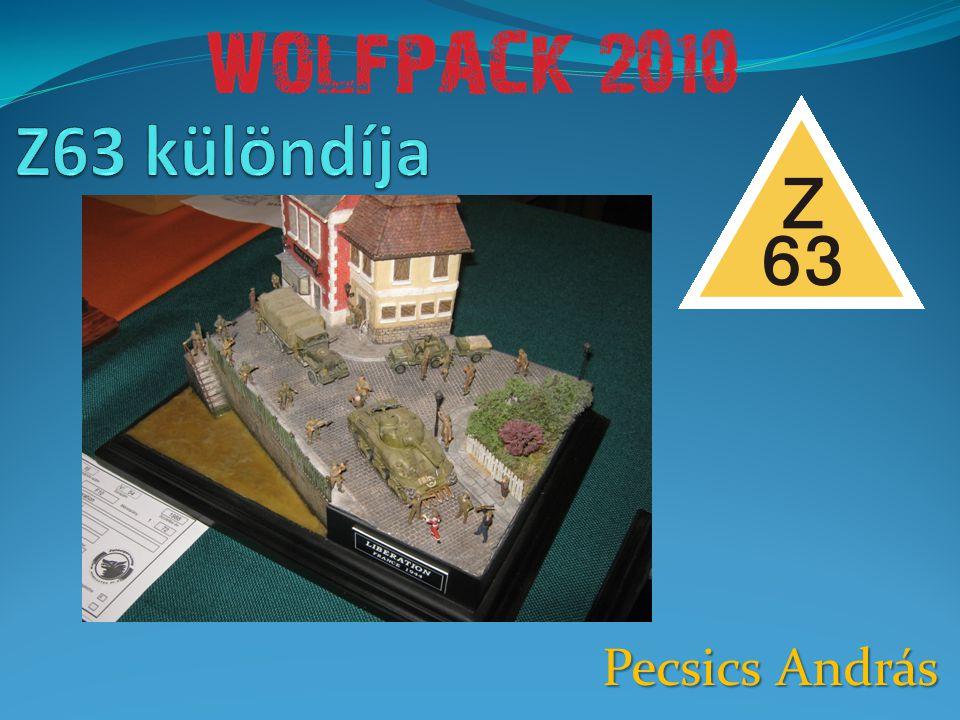 Z63 különdíja Pecsics András