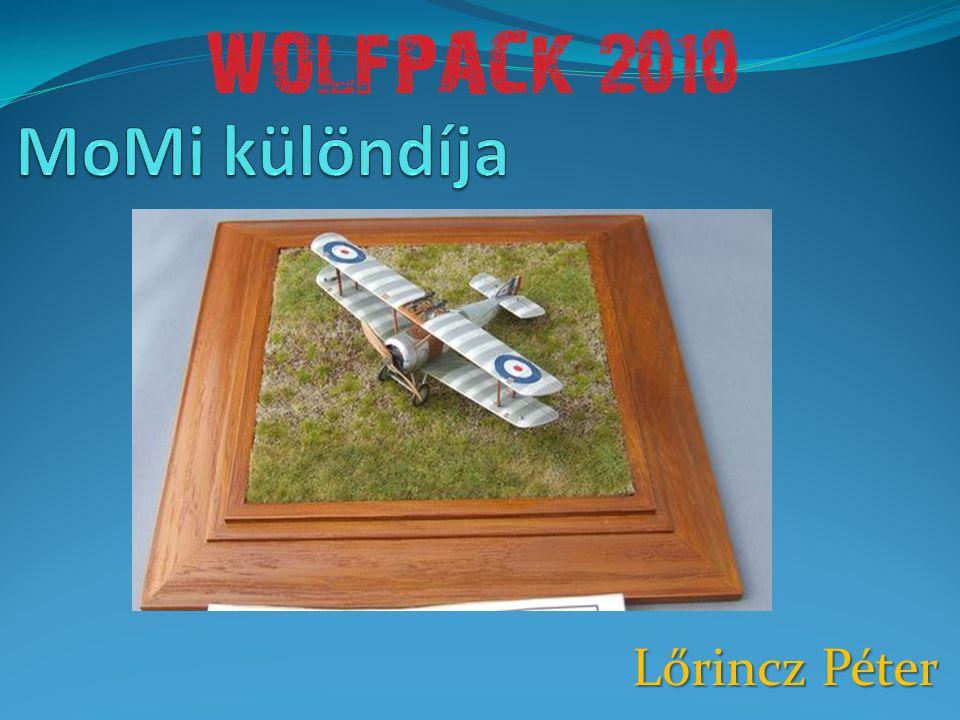 MoMi különdíja Lőrincz Péter