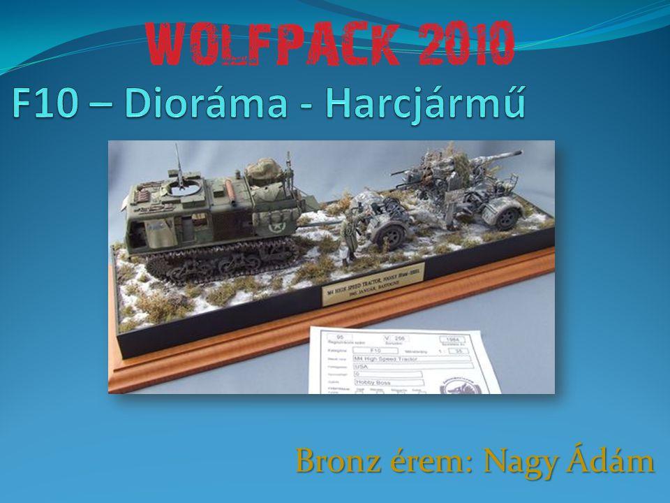 F10 – Dioráma - Harcjármű Bronz érem: Nagy Ádám