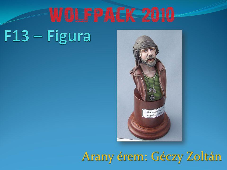 Arany érem: Géczy Zoltán