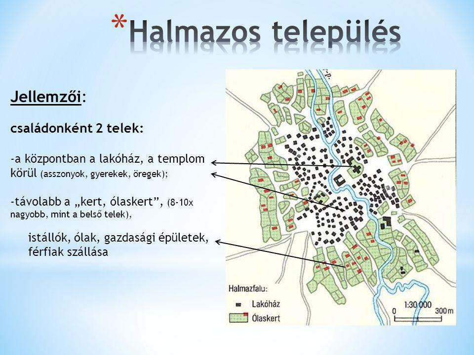 Halmazos település Jellemzői: családonként 2 telek: