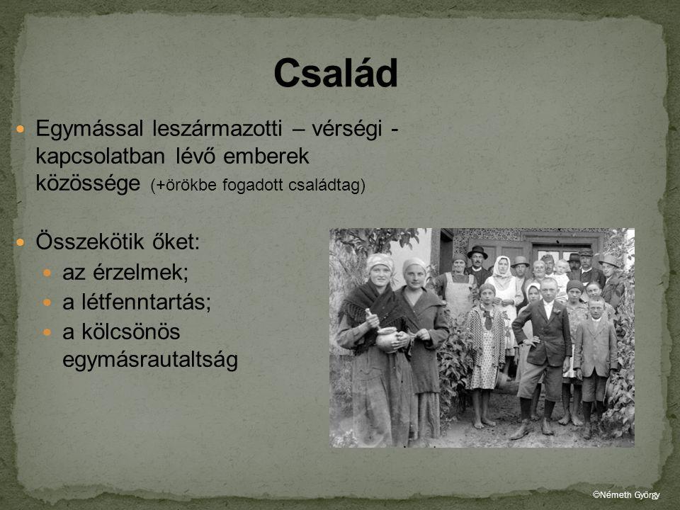 Család Egymással leszármazotti – vérségi - kapcsolatban lévő emberek közössége (+örökbe fogadott családtag)