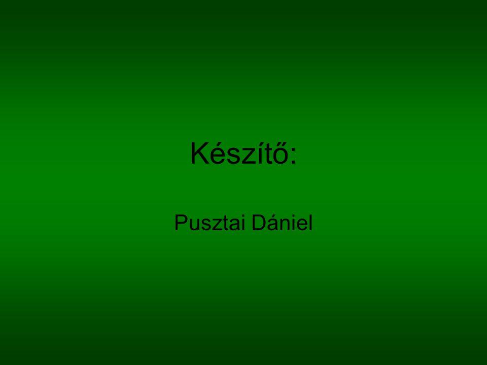 Készítő: Pusztai Dániel