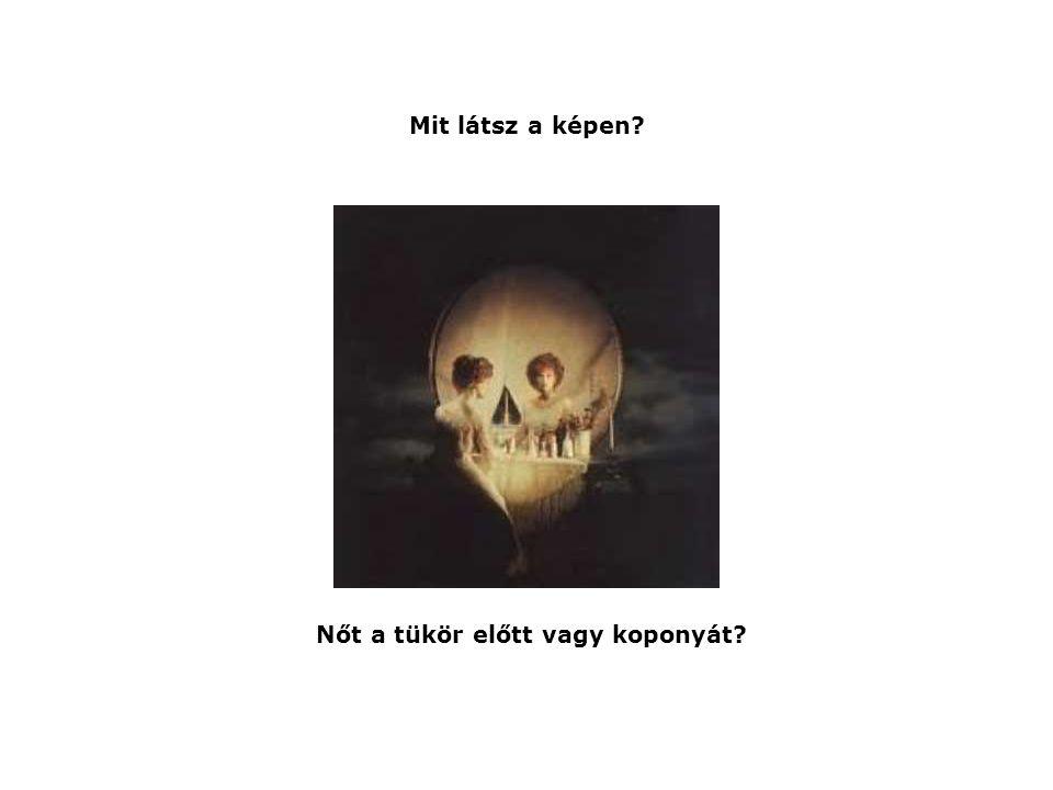 Nőt a tükör előtt vagy koponyát