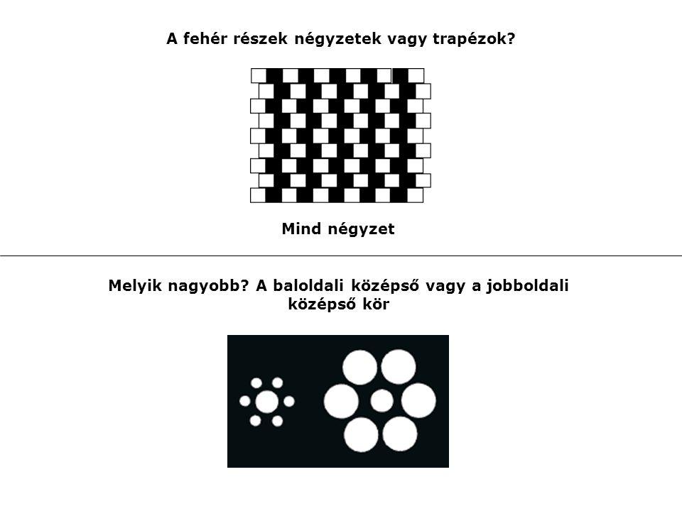 A fehér részek négyzetek vagy trapézok