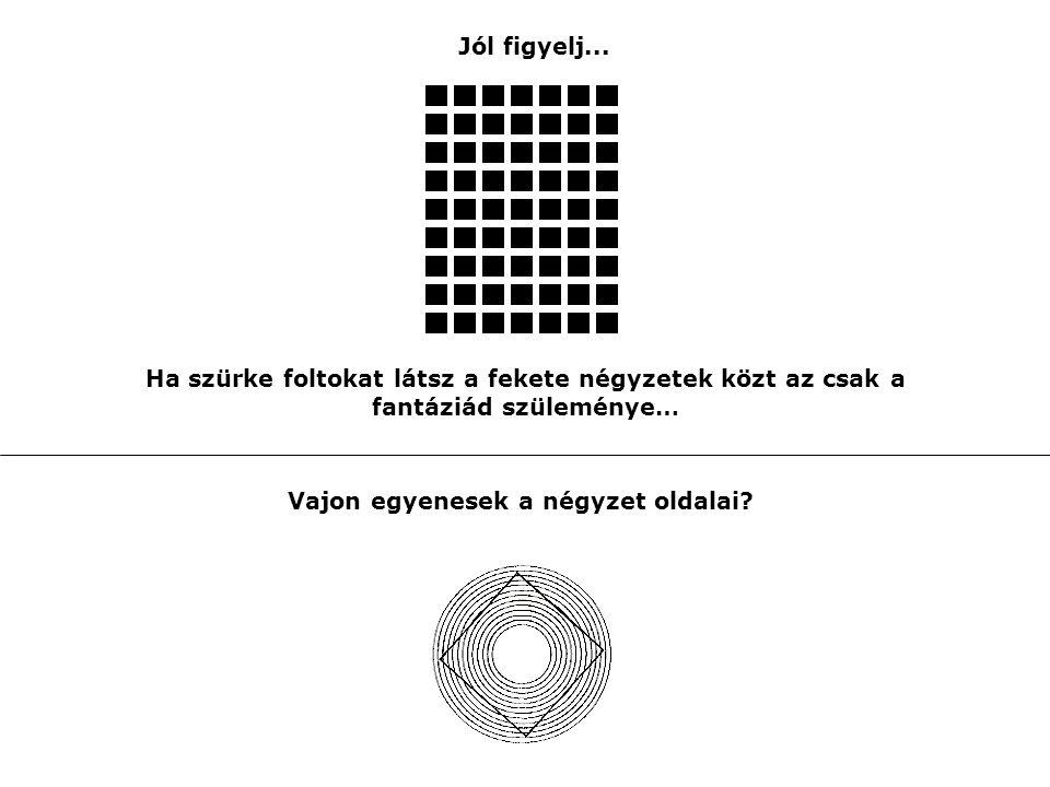 Vajon egyenesek a négyzet oldalai