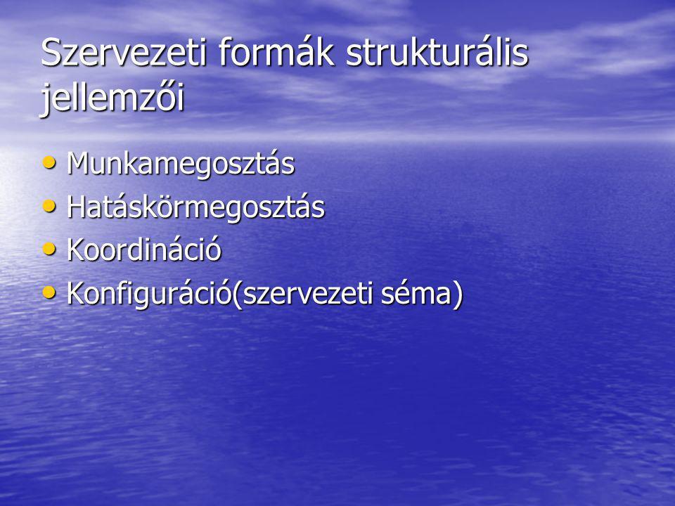 Szervezeti formák strukturális jellemzői