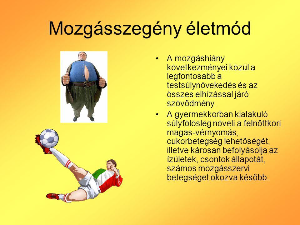 Mozgásszegény életmód