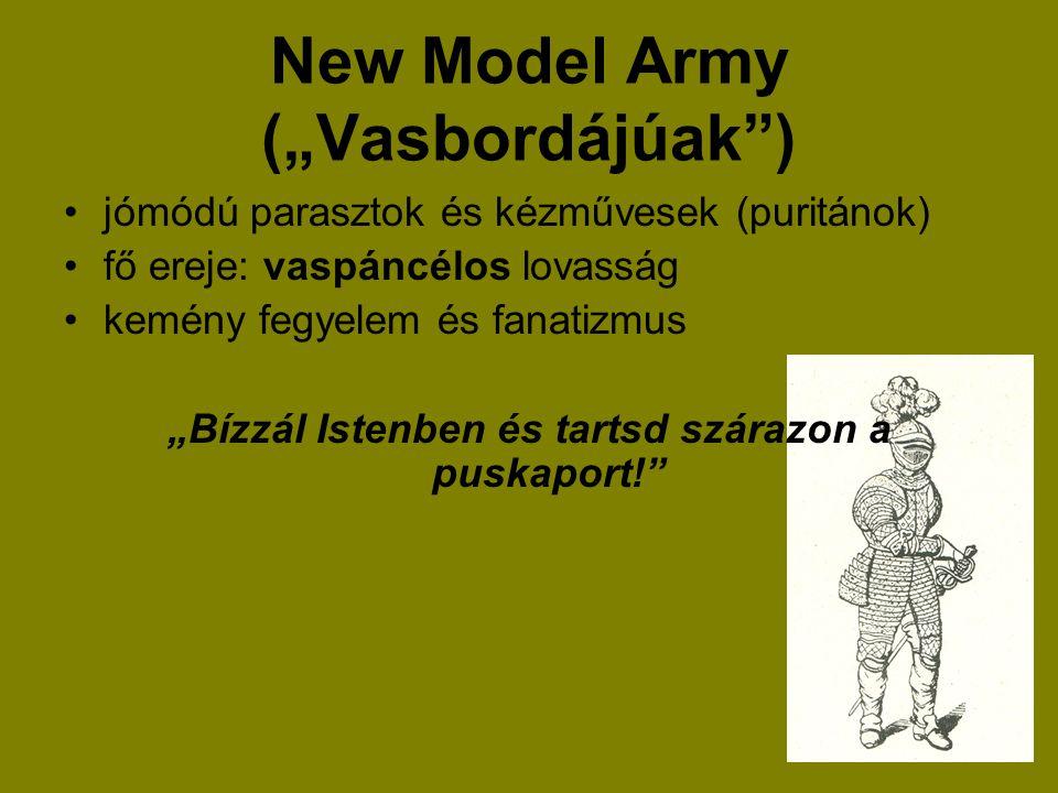 """New Model Army (""""Vasbordájúak )"""