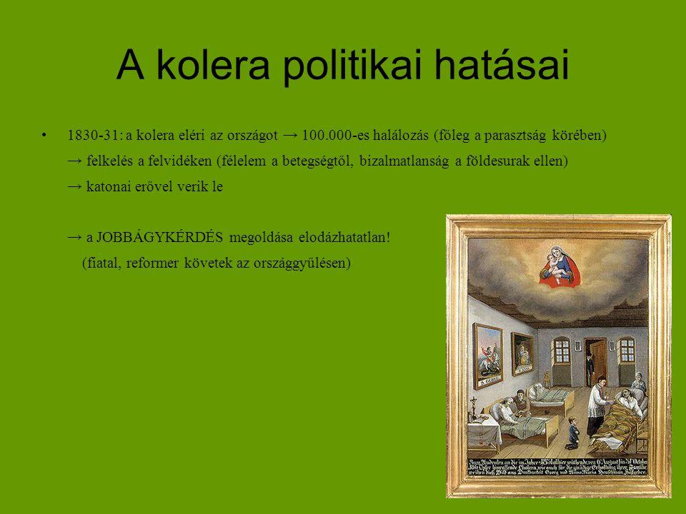 A kolera politikai hatásai
