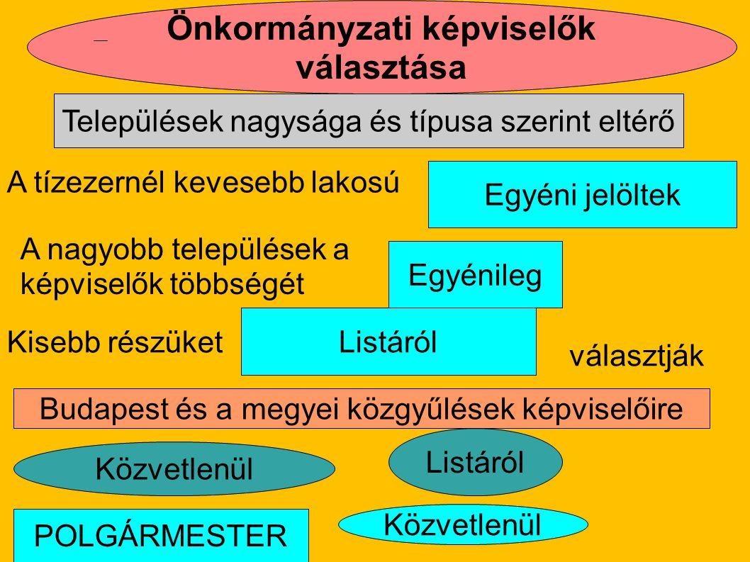 Önkormányzati képviselők választása