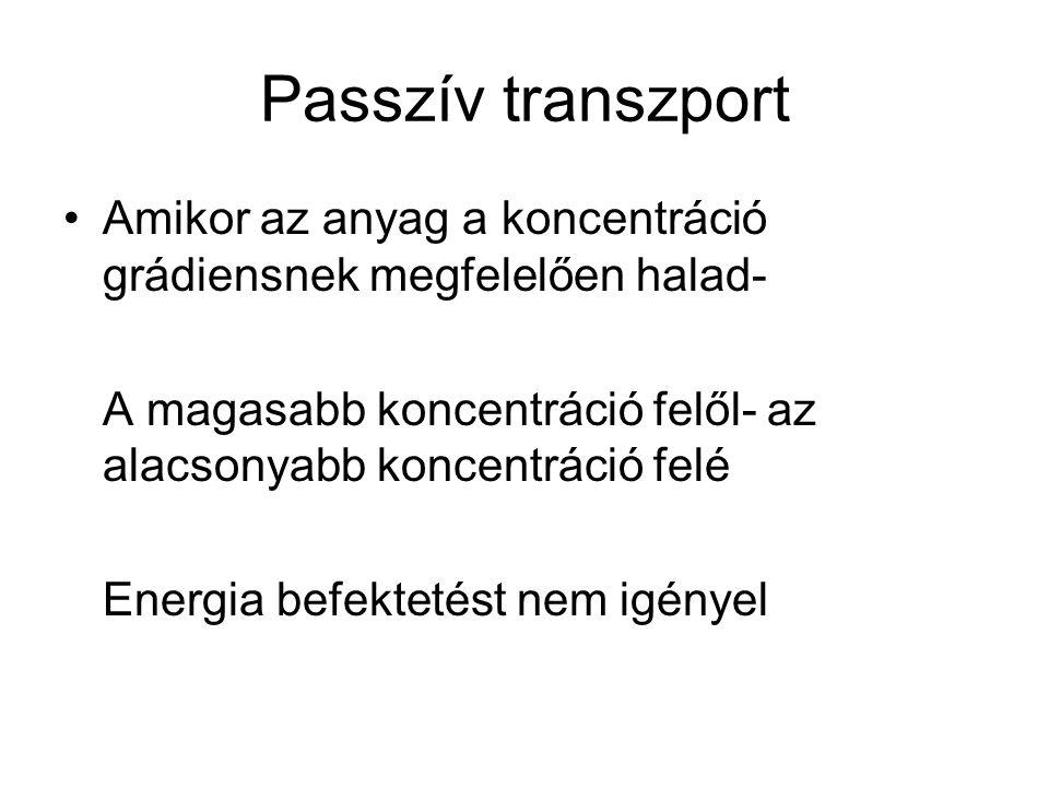 Passzív transzport Amikor az anyag a koncentráció grádiensnek megfelelően halad- A magasabb koncentráció felől- az alacsonyabb koncentráció felé.