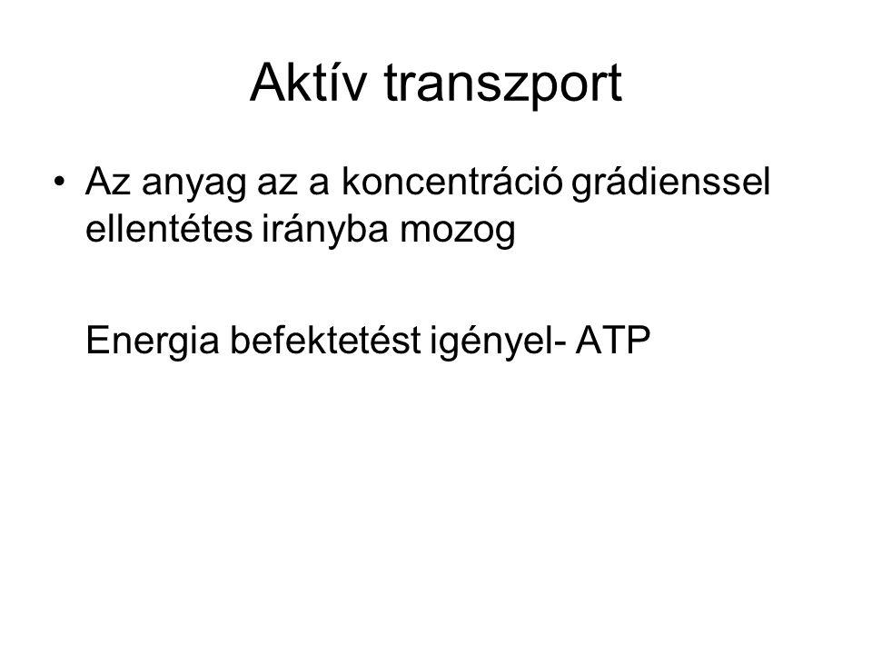 Aktív transzport Az anyag az a koncentráció grádienssel ellentétes irányba mozog.