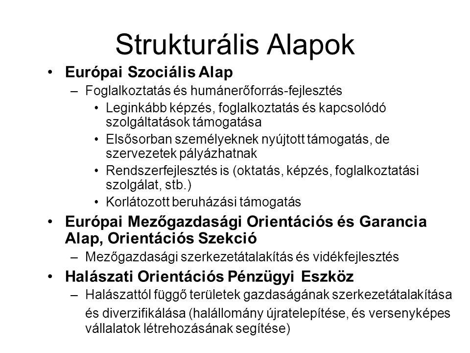 Strukturális Alapok Európai Szociális Alap