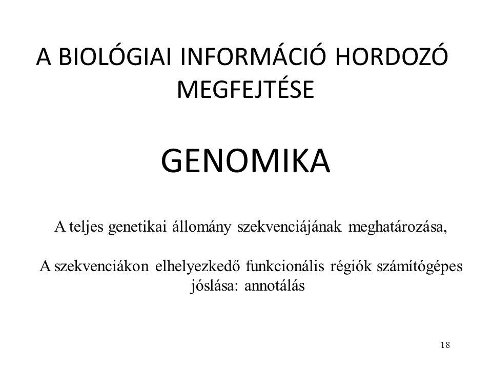 GENOMIKA A BIOLÓGIAI INFORMÁCIÓ HORDOZÓ MEGFEJTÉSE