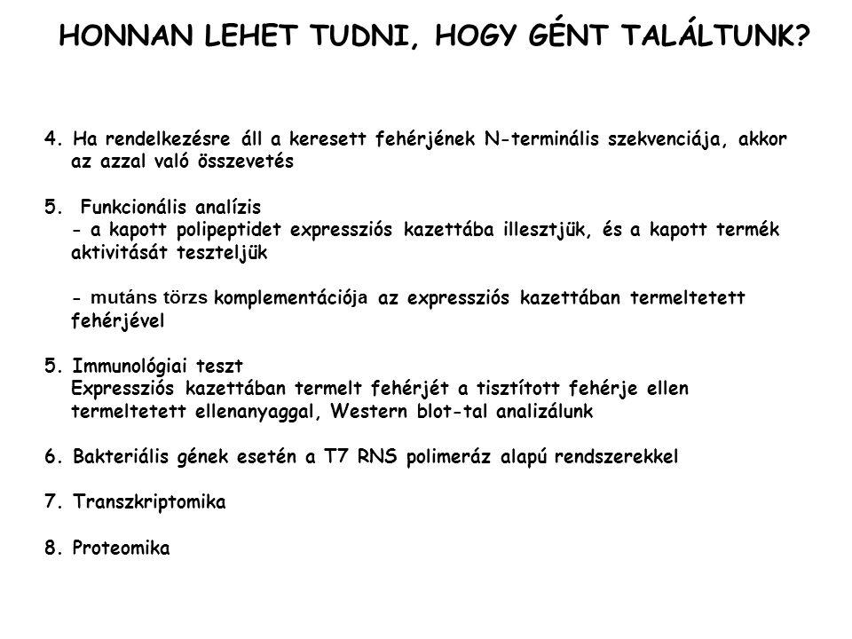 HONNAN LEHET TUDNI, HOGY GÉNT TALÁLTUNK