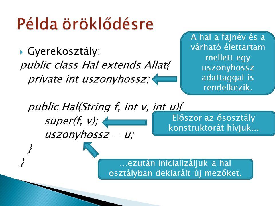 Példa öröklődésre Gyerekosztály: public class Hal extends Allat{