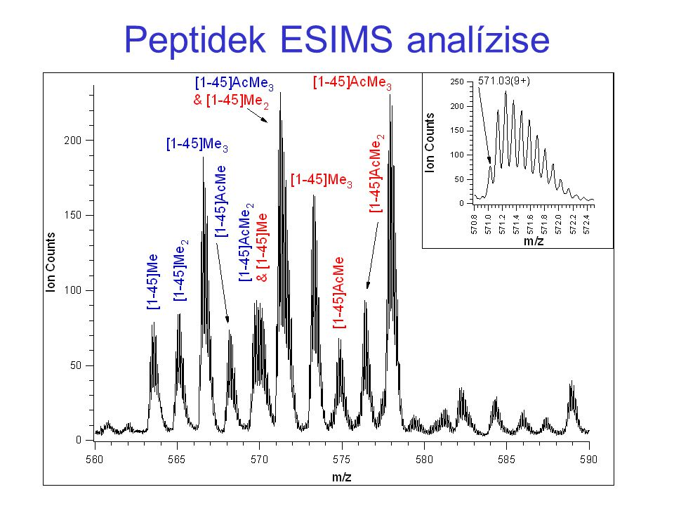 Peptidek ESIMS analízise