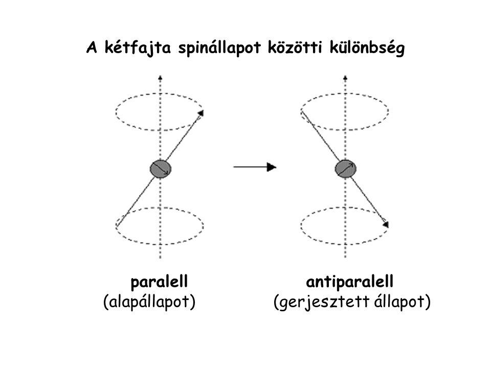 A kétfajta spinállapot közötti különbség