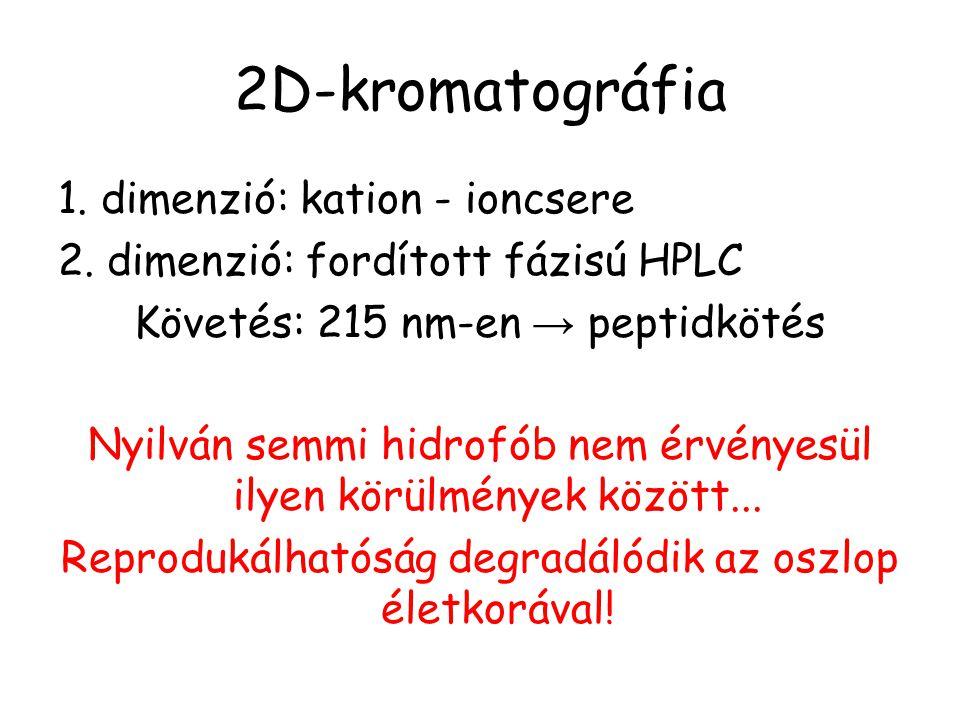 2D-kromatográfia 1. dimenzió: kation - ioncsere