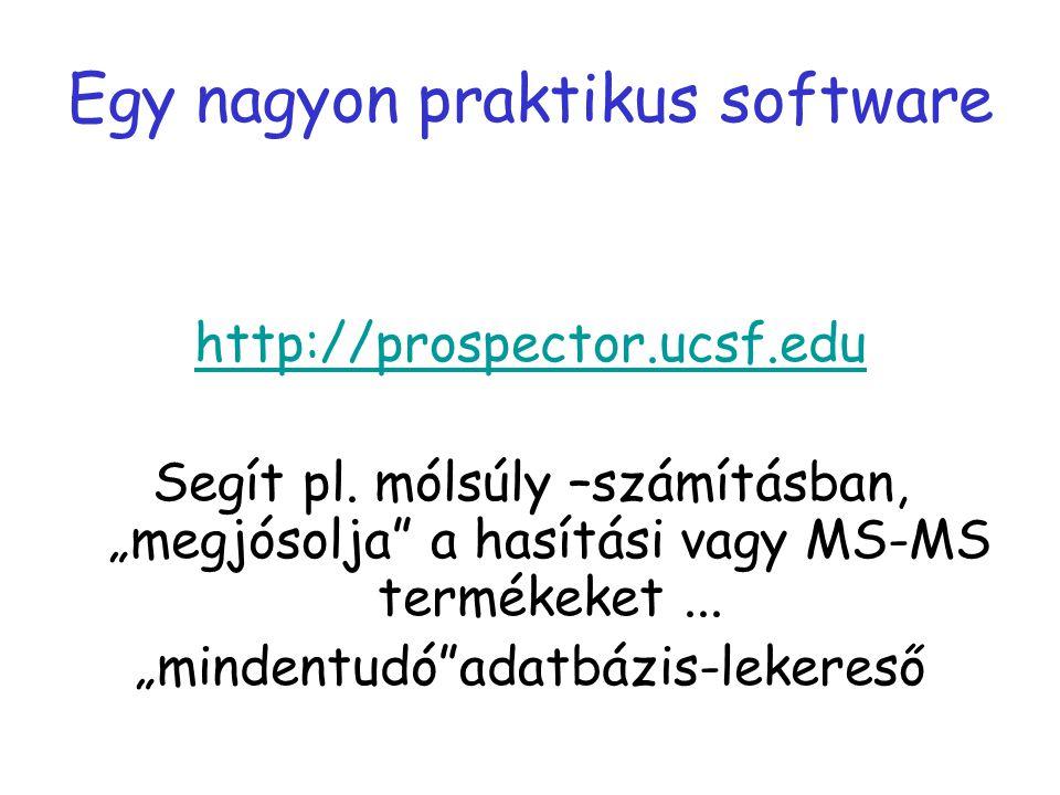 Egy nagyon praktikus software