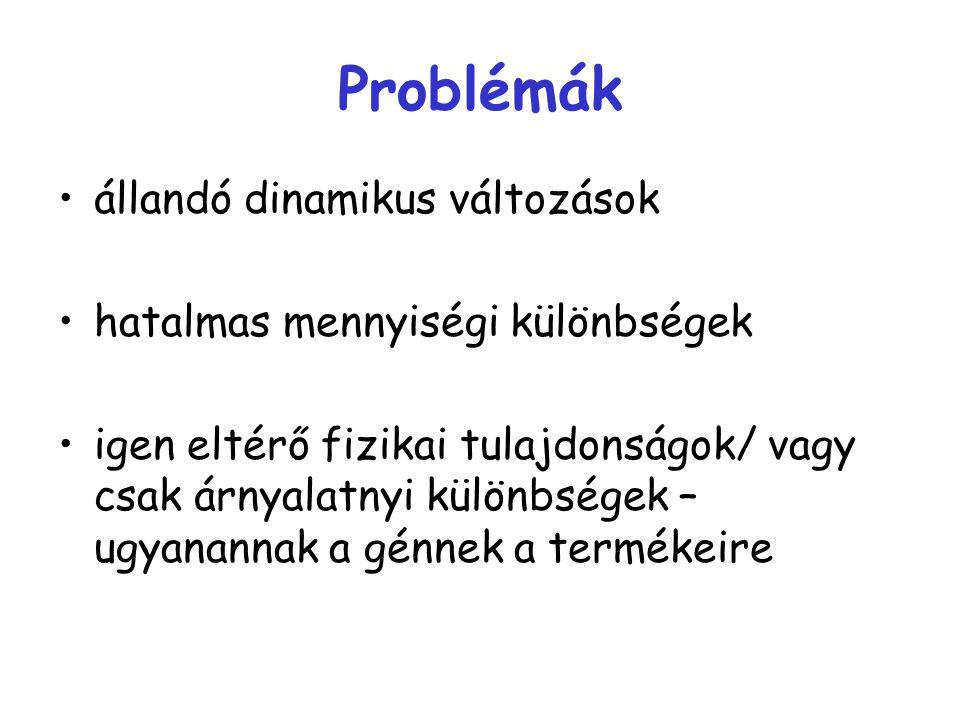 Problémák állandó dinamikus változások hatalmas mennyiségi különbségek