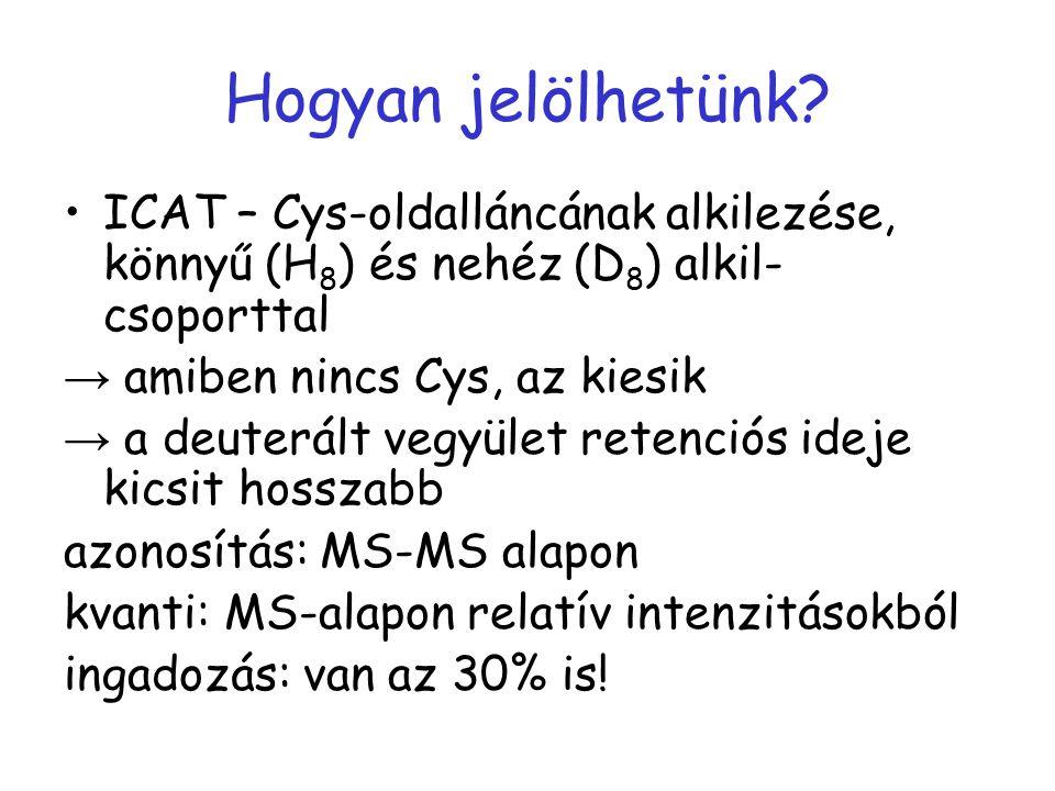 Hogyan jelölhetünk ICAT – Cys-oldalláncának alkilezése, könnyű (H8) és nehéz (D8) alkil-csoporttal.