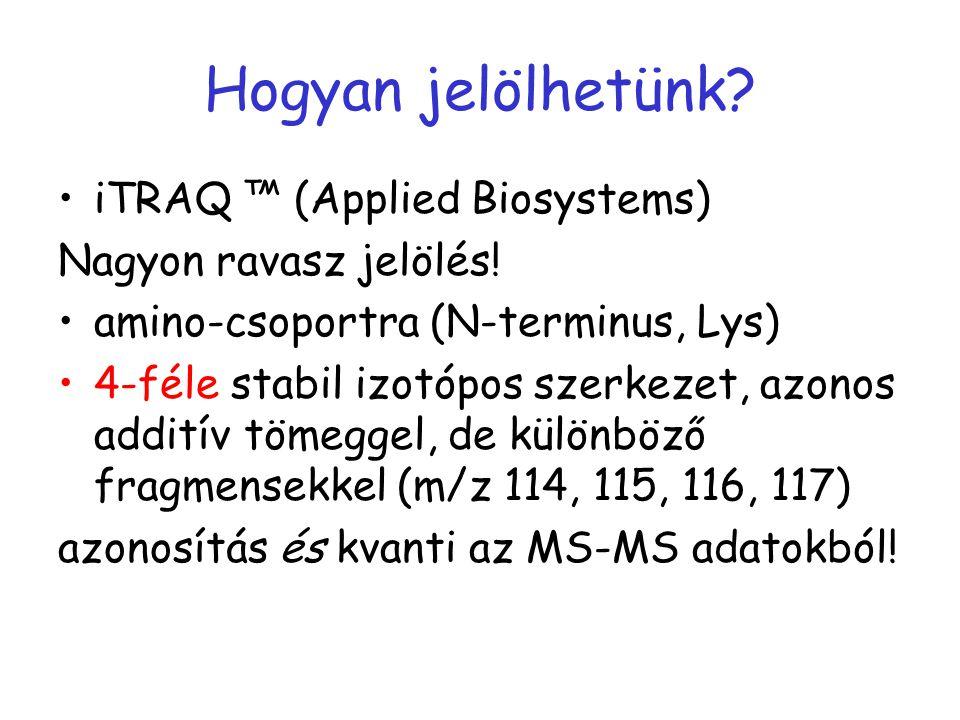 Hogyan jelölhetünk iTRAQ ™ (Applied Biosystems)
