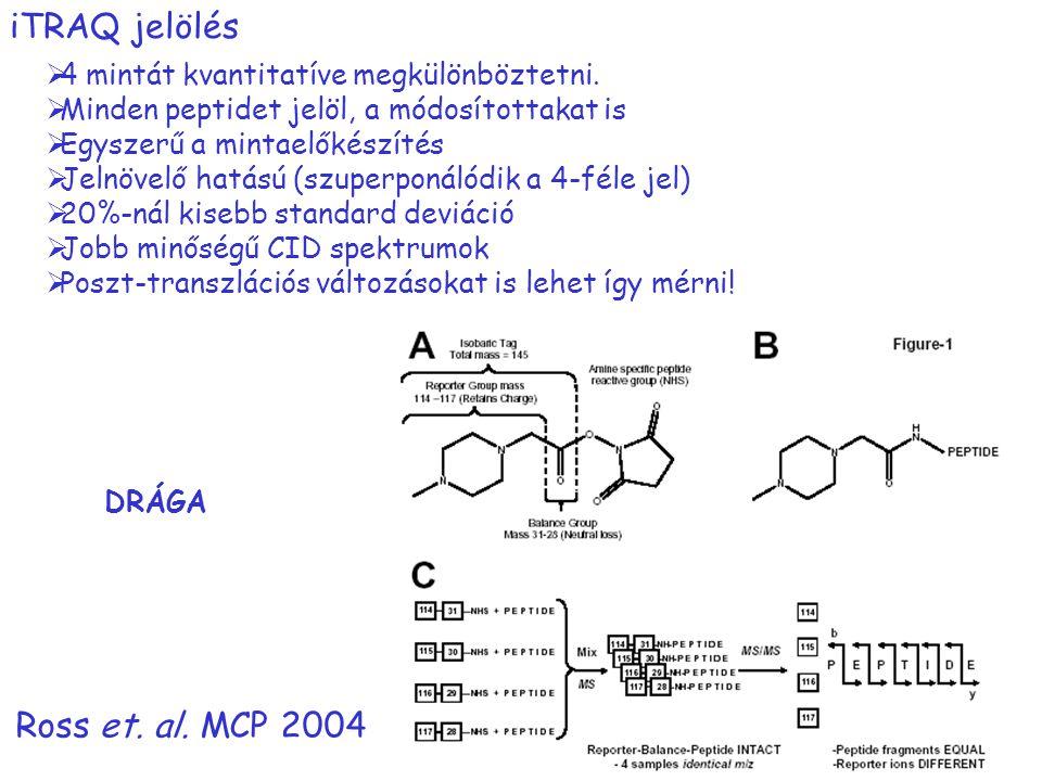iTRAQ jelölés Ross et. al. MCP 2004