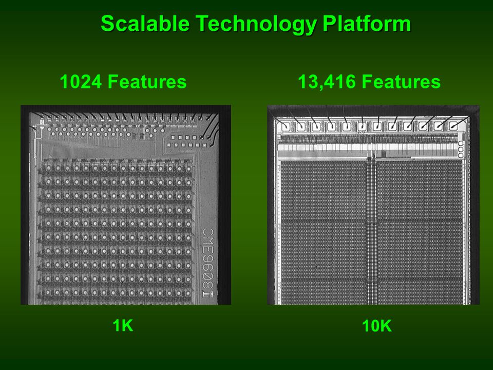 Scalable Technology Platform
