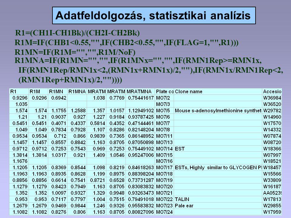 Adatfeldolgozás, statisztikai analízis