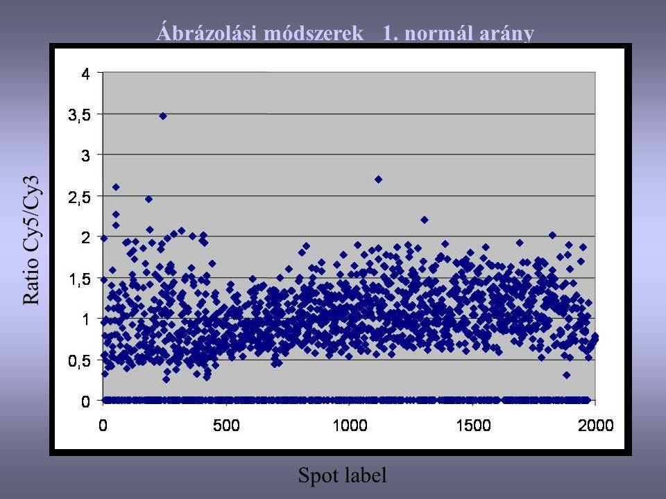 Ábrázolási módszerek 1. normál arány
