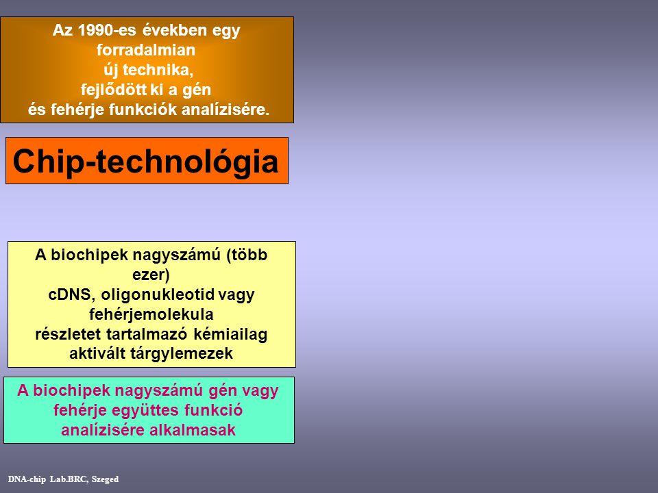Chip-technológia Az 1990-es években egy forradalmian új technika,