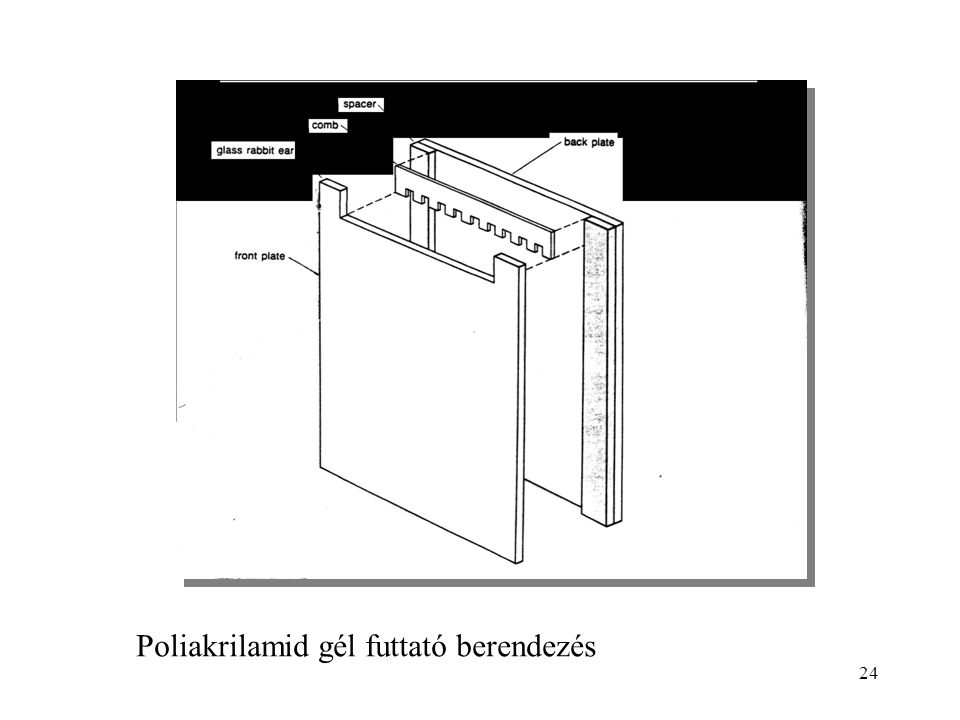 Poliakrilamid gél futtató berendezés